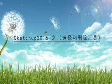 Sketchup2016 之(常用工具)视频课程