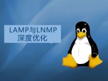 LAMP与LNMP深度优化实战视频课程(老男孩全新运维进阶系列L054-055)