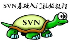 SVN基础入门-TortoiseSVN(小乌龟)视频教程