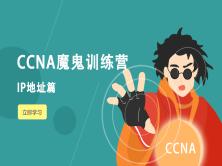 IP地址与子网划分视频教程(CCNA魔鬼训练营系列)