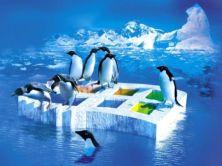 Linux Shell进阶文本处理工具讲解及实战视频课程