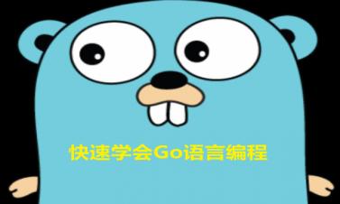 快速学会Go语言编程系列视频课程_VKER001
