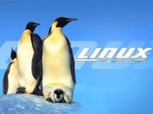 苏勇老师Linux系统自动化部署视频课程