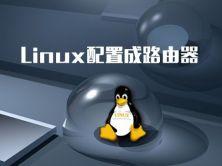Linux配置成路由器视频课程