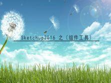 sketchup2016之(组件工具)视频课程