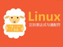 linux正则表达式与通配符揉碎剁烂实战讲解视频课程