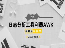 标杆徐2019 Awk深入学习实践视频课程