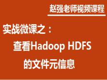 赵强老师:实战微课—5分钟教你快速掌握如何查看Hadoop HDFS的文件元信息
