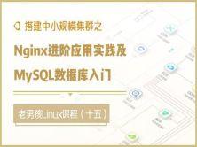 搭建中小规模集群-Nginx进阶应用实践及MySQL数据库入门(十五)