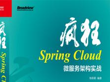 疯狂Spring Cloud微服务视频教程(二)