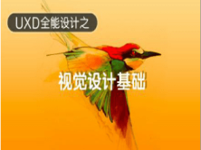 UXD全能设计之视觉设计基础—手绘视频课程