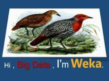 利用Weka進行數據(Big Data)分析和挖掘實戰視頻課程