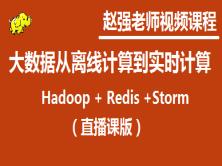 赵强老师:(直播课版)大数据从离线计算到实时计算(Hadoop+Redis+Storm)