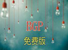 从零开始学BGP视频课程:【适用于思科CCNP、CCIE入门】