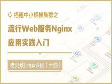 搭建中小规模集群之流行Web服务Nginx应用实践入门(十四)