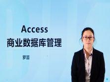 Access管理商业数据库视频教程