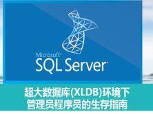 超大数据库(XLDB)环境下的管理员程序员生存指南视频课程