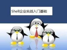 企业Shell实战基础篇视频课程-运维人员必备利器2018