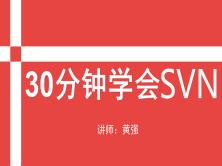 30分钟学会SVN-**用的版本管理工具SVN入门视频教程