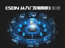 《SDN(软件定义网络)从入门到精通》 原理视频课程