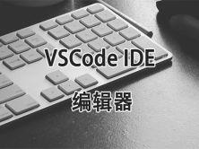 掌握 VSCode IDE 编辑器视频课程(测试Node.Js+ JavaScrip)