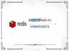 小白轻松学Redis 4.x NoSQL数据库