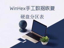 WinHex手工数据恢复之分区表视频课程