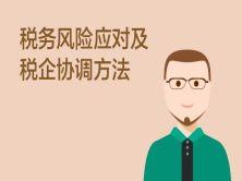 税务风险应对及税企协调方法视频教程