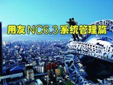用友NC系统管理视频课程