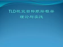 TLD视觉目标跟踪框架理论与实践视频课程