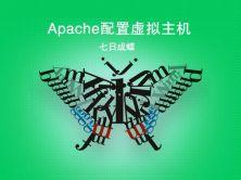 Apache配置虚拟主机(七日成蝶)