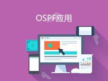 高级网络之OSPF应用视频课程