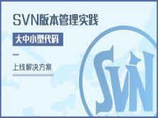 SVN版本管理实践与大中小型代码上线解决方案精讲视频课程