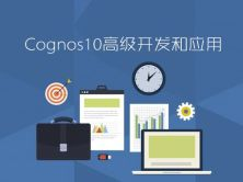 Cognos10高级开发和应用视频课程