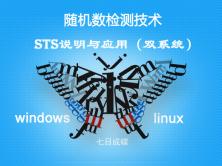 随机数检测与STS部署与应用(双系统)(七日成蝶)