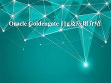 Oracle Goldengate 11g及应用介绍视频课程