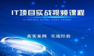 IT項目實施技巧與項目管理實戰視頻課程[陳志文]