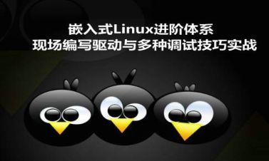 嵌入式Linux进阶:现场编写高级驱动与独家调试技巧(韦东山2期)