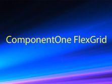 ComponentOne FlexGrid基础视频课程