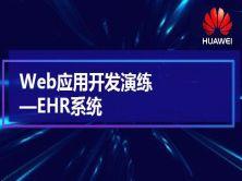Web应用开发演练视频课程-EHR系统