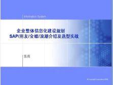 企业整体信息化建设规划SAP/用友/金蝶/浪潮介绍及选型实战视频课程