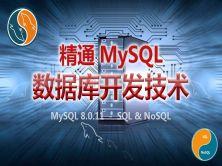 精通MySQL 8.x数据库开发技术视频课程