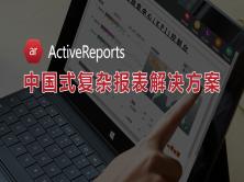 ActiveReports报表三小时入门视频教程