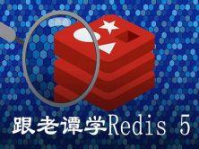 跟老譚學Redis 5視頻課程