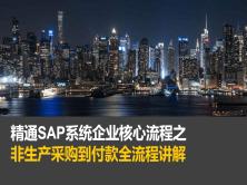 SAP MM模块/FI模块集成之非生产采购到付款全流程视频课程