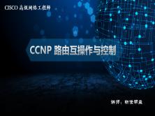 CCNP 路由互操作及控制