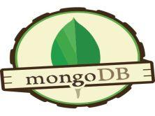 測試工程師之MongoDB快速實戰(小強測試)