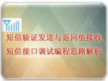 短信验证发送与返回值接收短信接口调试编程思路解析