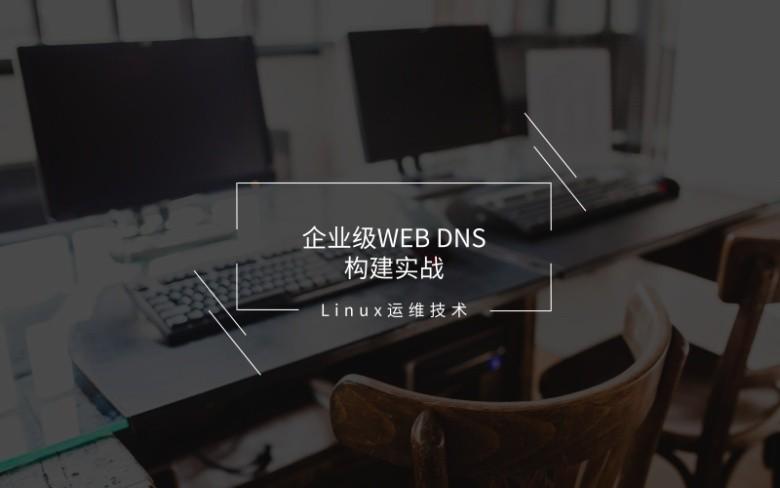 企业级Web Dns构建实战