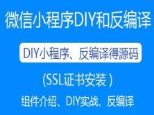 微信小程序DIY制作开发和网站封装(人人都会)